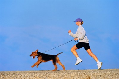 get-fit-with-your-pet_edistep.png
