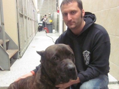 Volunteer Tail: Sean Casey Animal Rescue Helps All Unwanted Animals